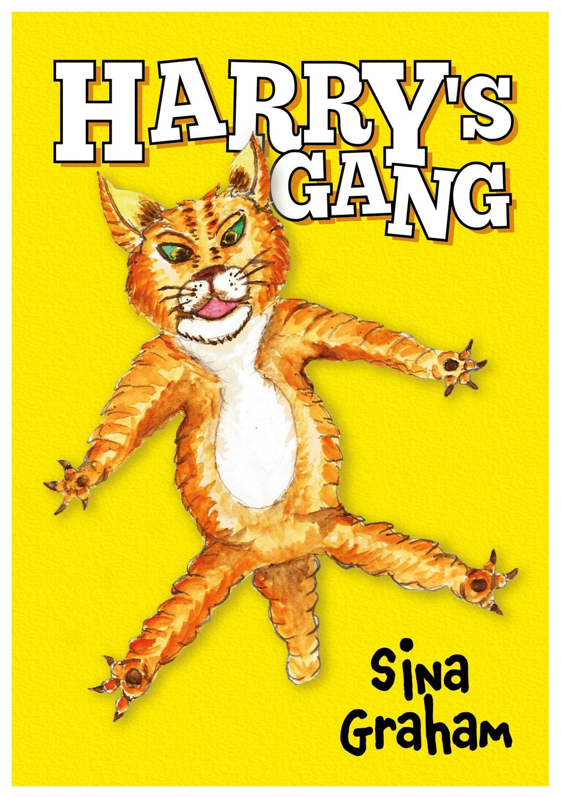 Harry's Gang by Sina Graham