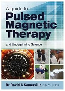 Pulsed magnetic therapy
